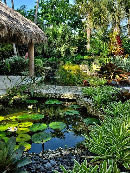 Tropical Pond Houzz
