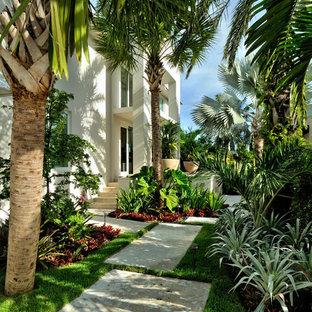 Foto på en tropisk trädgård i delvis sol