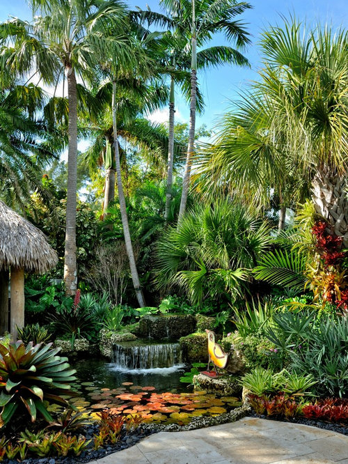 Large Tropical Garden Design Ideas, Renovations & Photos on Tropical Backyard  id=87515