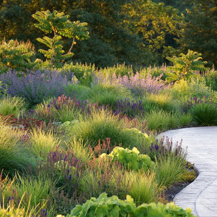 Photo of a contemporary landscaping in St Louis.