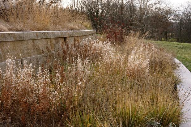 Contemporary Landscape by Adam Woodruff LLC