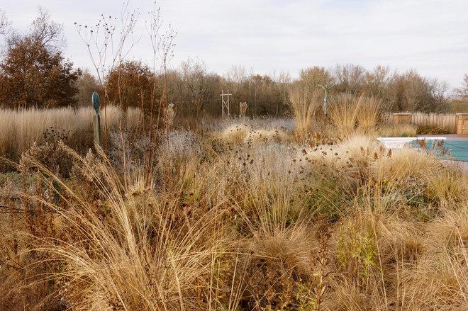 Contemporary Landscape by Adam Woodruff + Associates, Garden Artisans