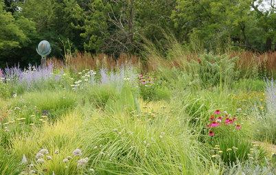 Get the Dirt on Your Garden's Soil
