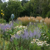 6 Gorgeous Plant Combos With Low-Water Ornamental Grasses