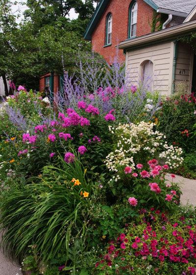 Garden by Barbara Pintozzi