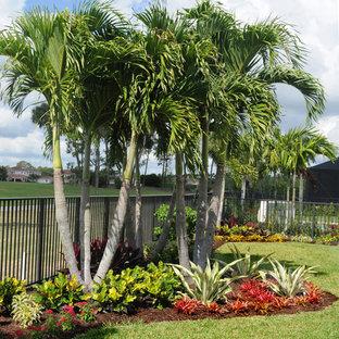 Foto di un grande giardino tropicale esposto in pieno sole dietro casa con pavimentazioni in cemento