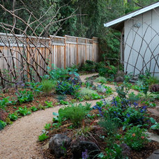Traditional Landscape by Steve Masley Consulting and Design
