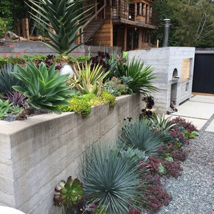 Design ideas for a tropical landscaping in San Francisco.