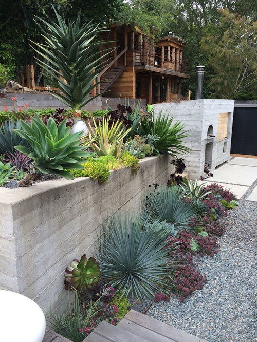 Low maintenance landscaping houzz for Large low maintenance garden