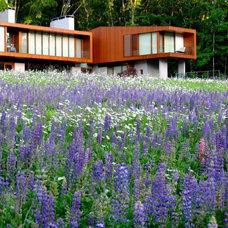 Modern Landscape by Designing Eden llc