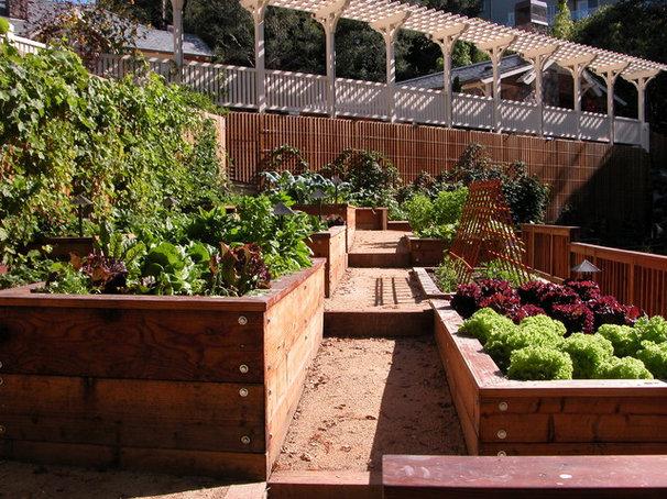 Traditional Landscape by Avant Garden