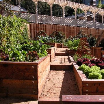 Kentfield estate kitchen garden