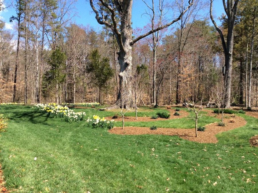 Keswick Estate, Albemarle County, VA:  Bringing Nature Home