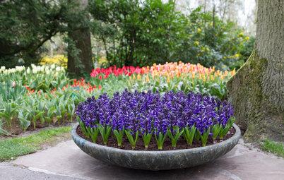 「いい香りがする庭」って言われたい! フレグランスガーデンをつくる