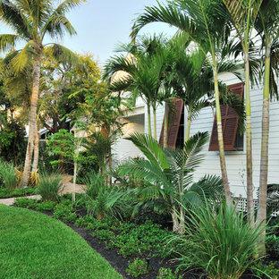 Immagine di un giardino tropicale dietro casa