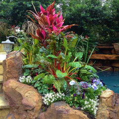tropical landscape by Designs By Elizabeth