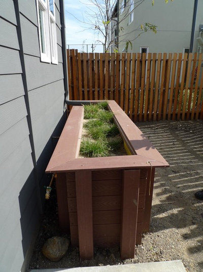 Landscape Kinsell Commons Stormwater Planter