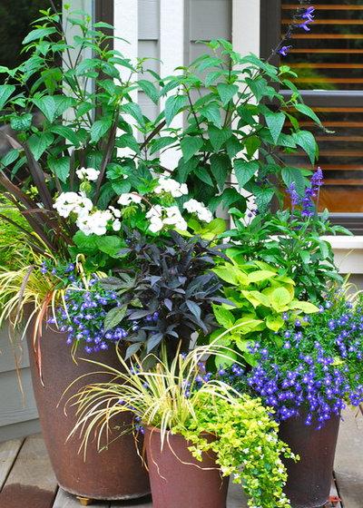 Contemporary Garden by Simply Garden Design LLC