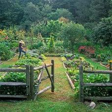 Eclectic Landscape Kitchen Garden