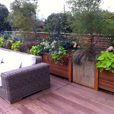 Contemporary Landscape by Glenna Partridge Garden Design