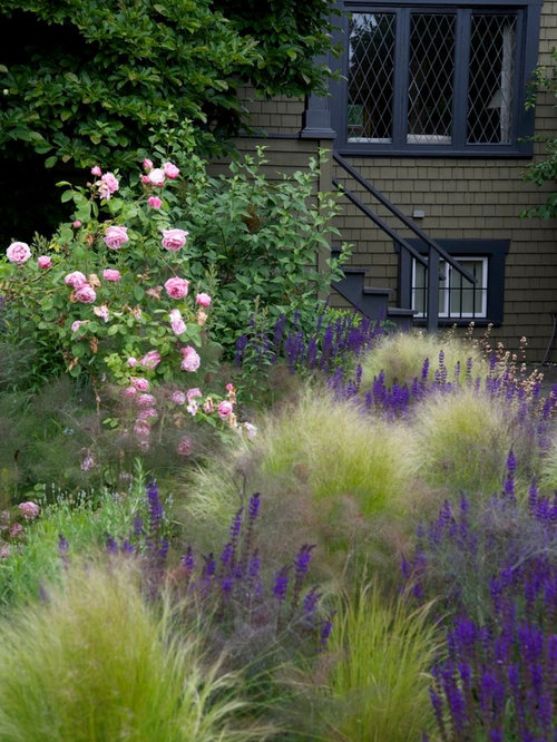 Grass Garden Houzz