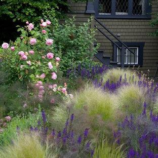 Kitsilano Front Garden