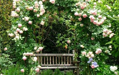 12 of the Prettiest Garden Arbours