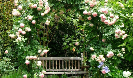 12 of the Prettiest Garden Arbours