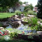 Koi Pond Backyard Pond Amp Small Pond Ideas For Your