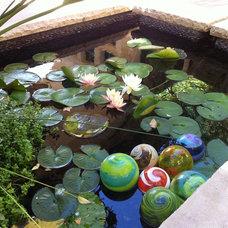 Mediterranean Landscape by Pool Environments, Inc.