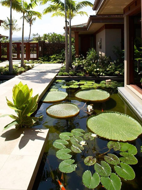 Tropical landscape ideas designs remodels photos for Artificial pond water