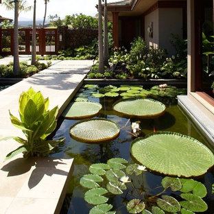Modelo de jardín tropical con fuente