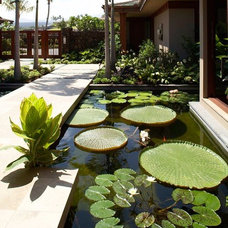 Tropical Landscape by GM Construction, Inc.