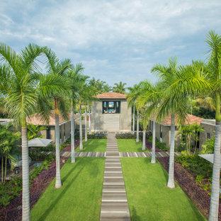 メキシコシティの中サイズのトロピカルスタイルのおしゃれな庭 (庭への小道、半日向、マルチング舗装) の写真