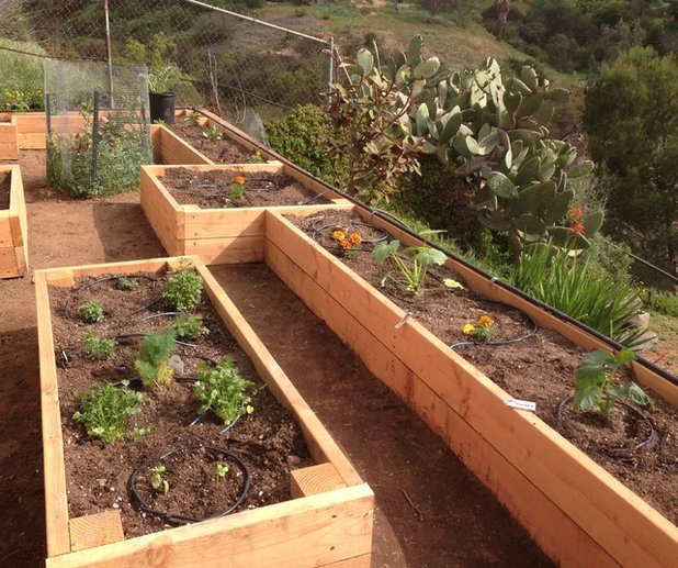 Traditional Garden by Salt Lake Woodworks