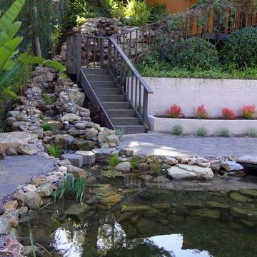 La Mesa Pond and Waterfall design