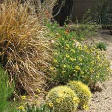 Mediterranean Landscape by Landscape Design West, LLC