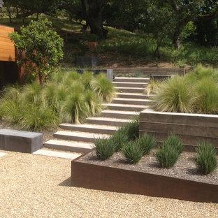 Esempio di un grande giardino xeriscape moderno esposto in pieno sole con un pendio, una collina o una riva, un muro di contenimento e ghiaia