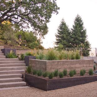 Réalisation d'un grand xéropaysage minimaliste avec une pente, une colline ou un talus, un mur de soutènement, une exposition ensoleillée et du gravier.