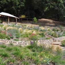 Mediterranean Landscape by Huettl Landscape Architecture