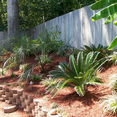 Tropical Landscape by Tall Pines Landscaping, LLC