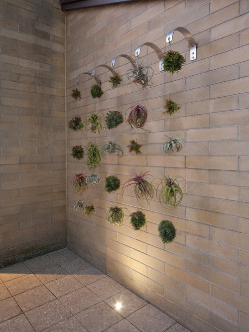 Hanging Airplants Home Design Ideas Pictures Remodel And