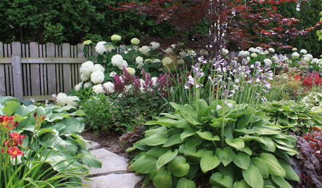 Spring Landscaping Tips spring gardening: tips from the experts