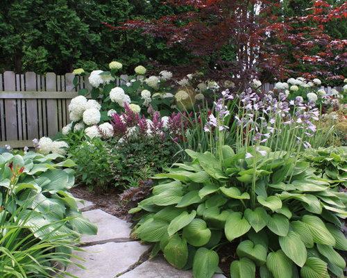 Best Hosta Gardens Design Ideas Amp Remodel Pictures