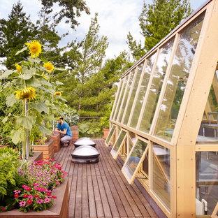 Idee per un giardino design esposto in pieno sole sul tetto con un giardino in vaso e pedane