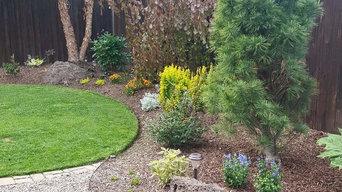 Landacape design, installation, irrigation