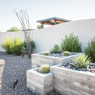 Inspiration for a mid-sized modern drought-tolerant and full sun front yard gravel landscaping in Phoenix.