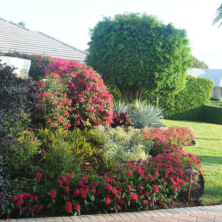 This is an example of a mid-sized tropical full sun front yard concrete paver landscaping in Miami.
