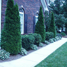 Traditional Landscape by HandyANDY Services