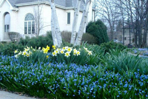 Zone 5 gardening home design ideas pictures remodel and for Garden designs for zone 5